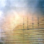 Почему нужно сушить древесину?