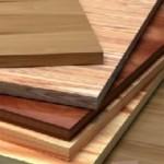 Самые востребованные породы деревьев для изготовления пиломатериалов