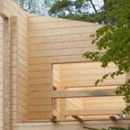 Как выбрать древесину для коттеджа? Зимняя или летняя древесина?